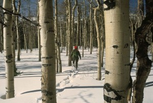 wisconsin-events-snowshoeing
